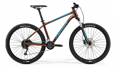 Big.Seven 100-2x (Bronze/Blue)